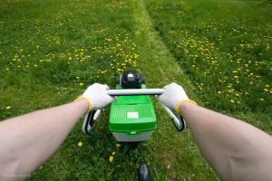 Mirosul de iarbă proaspăt tunsă este de fapt un strigăt de ajutor