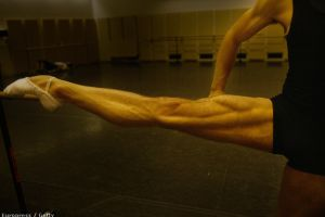 Care este cel mai puternic muşchi?
