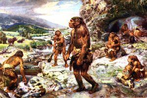 Clima pare a fi motivul extincţiei Neanderthalienilor