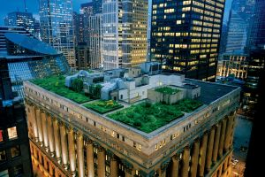 Legea franceză şi acoperişurile verzi
