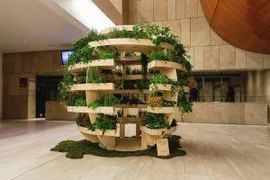 """Arhitecţii crează o """"grădină de interior"""" gratuită"""