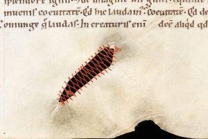 Arta de a repara cărţile medievale